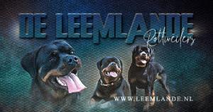 Leemlande